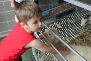 KindiFarm Visits Children First 2